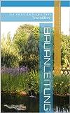 Bauanleitung für einen biologischen Teichfilter (German Edition)