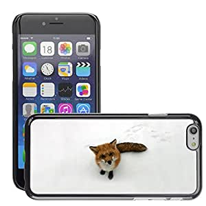 Hot Style Cell Phone PC Hard Case Cover // M00047203 funny wild animals fox // Apple iPhone 6 PLUS 5.5