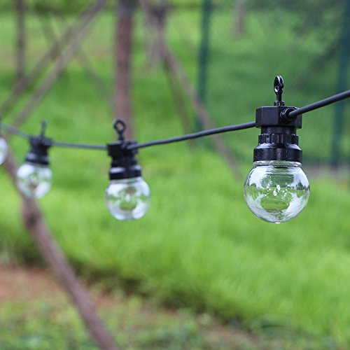 110V Led Festoon Lighting
