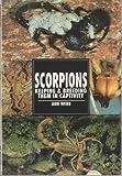 Scorpions, Ann Webb, 0793820669
