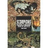 Scorpions: Keeping & Breeding Them in Captivity