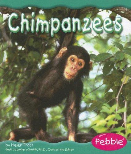 Download Chimpanzees (Rain Forest Animals) PDF