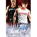 Fire and Fog (Carlisle Cops Book 6)