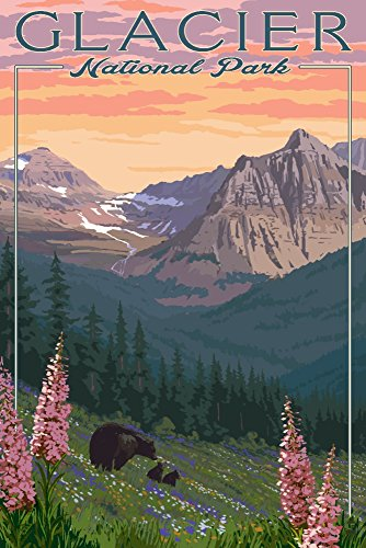 Glacier National Park, Montana - Bears and Spring Flowers - Mountains (16x24 Giclee Gallery Print, Wall Decor Travel Poster) (National Gallery Best Paintings)