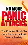 img - for No More Panic Attacks: The Concise Guide To Cure Panic Attacks & Severe Anxiety book / textbook / text book