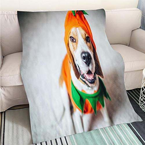 Art Design Photos Cool Quilt Beagle Dog in a Pumpkin Costume Hypoallergenic Blanket for Bed Couch Chair ()