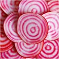 Package of 1,000 Seeds, Chioggia Beets (Beta vulgaris) Seeds By Seed Needs