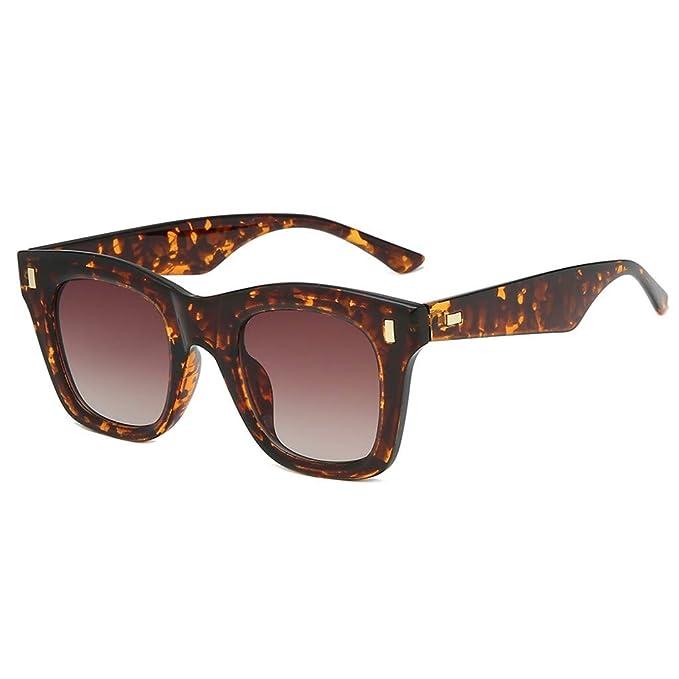 Amazon.com: Fheaven - Gafas de sol para mujer, tamaño grande ...