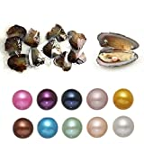 Freshwater Cultured Wish Pearls Oyster with Round Pearl Inside 10PC Love Oysters 10 Different Colors (7-8mm)