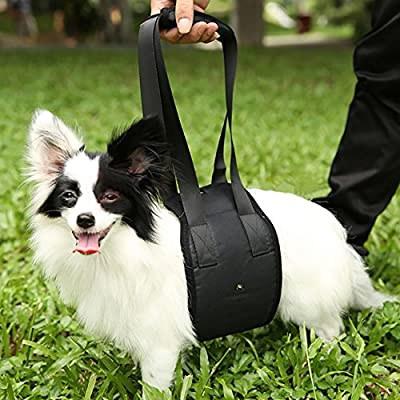Pettom Dog Lift Support & Rehabilitation Harness for Old & Disability & Injured Dogs & Dogs with Arthritis Go Upstairs & Get On A Car