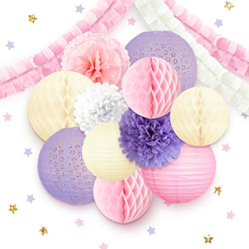 NICROLANDEE Princess Party Decorations for Girls, Pink Paper Lantern Tissue Pom Poms Garland Honeycomb Ball for Girl Baby Shower Wedding Hen Party Mother's Day Birthday Teatime Girly Bedroom Decor