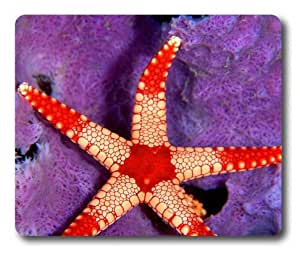Lilyshouse Beautiful Starfish 002 Rectangle Mouse Pad