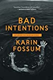 Bad Intentions (Inspector Sejer)