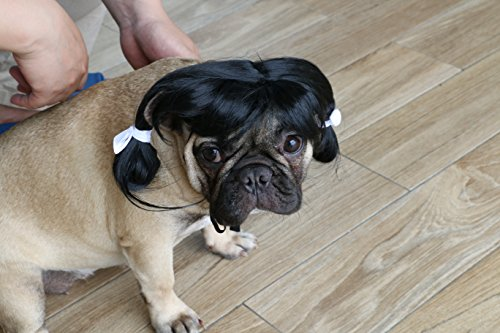 Pet Sale Cat Costumes For (iChoue Quality Pet Dog Cat Wigs Fake Hair Costume With Adjustable Elastic Bands Comb-over Hair -)