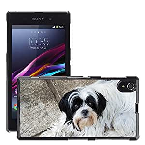 Hot Style Cell Phone PC Hard Case Cover // M00134303 Dog Animal Black Doggie Animals // Sony Xperia Z1 L39 C6903 C6906 C6943 C6902