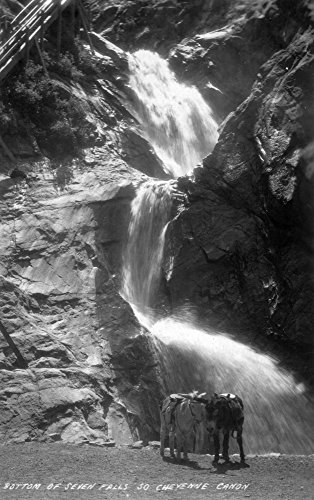 Colorado Springs, Colorado - South Cheyenne Canyon; Burro at Seven Falls Photograph (16x24 SIGNED Print Master Giclee Print w/Certificate of Authenticity - Wall Decor Travel -
