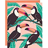 PAPER SOURCE DELUXE BOXED STATIONERY // TROPICAL TOUCAN BIRDS THEMED NOTE CARDS // 10 CARDS & ENVELOPES [Elegant,fashion,nature,animal,bird,party,invite,thank you,correspondence.hello,greeting]