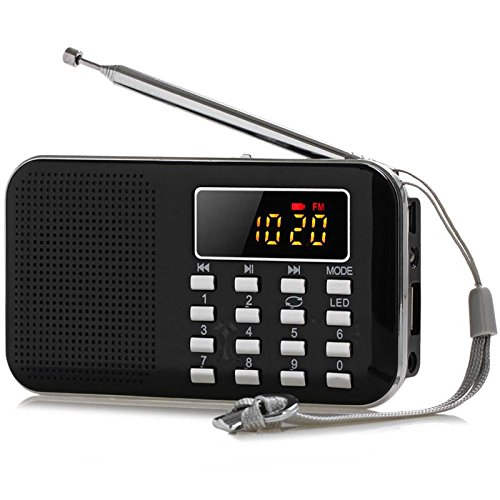 GES NET Mini Digital AM FM LCD Radio Speaker, Micro SD/TF USB Disk Speaker MP3 Music Player Stereo, Portable Pocket Novelty Radio Receiver, Handheld Radio (black) (Iphone 5c Clock Radio)