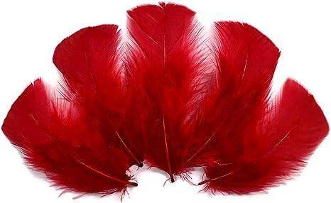 1//4 Lb Pastel Mix Turkey T-Base Plumage Wholesale Feathers Bulk