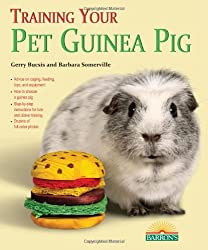 Training Your Guinea Pig (Training Your Pet (Barron's))