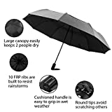 Rainscape Double Layer Folding Umbrella, Windproof Travel Umbrella, Auto Open and Close – Large Size Canopy for Two