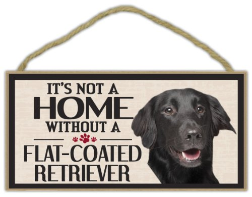New Flat Coated Retriever - Wood Sign: It's Not A Home Without A FLAT COATED RETRIEVER | Dogs, Gifts