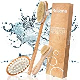 Facial Cellulitis Baby - Dry Brushing Body Brush Set - Best for Cellulite, Lymphatic Drainage & Skin Exfoliating - Natural Bristle Spa Kit - Long Handle Back Scrubber, Massager & Face Exfoliator for Radiant Skin