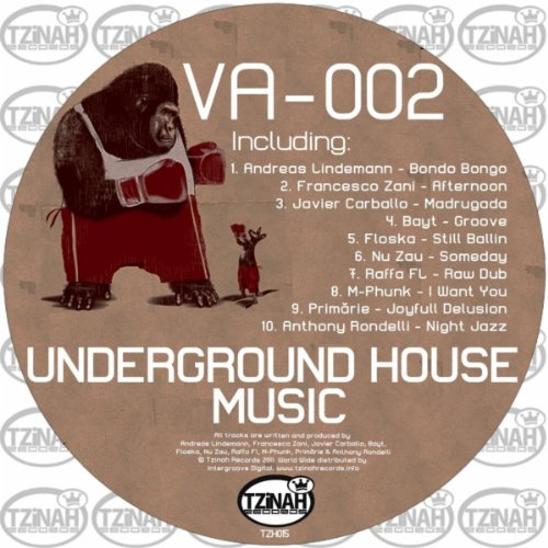 underground house music 002 by various artists on amazon