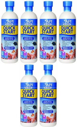 API Marine Quick Start 96oz (6 x 16oz) by API
