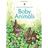 Baby Animals (Young Beginners) by Emily Bone (2016-03-01)