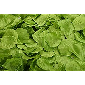 Helenhouse 3000 PCS Artificial Silk Flower Green Rose Petals for Wedding Party Bridal Decoration 1