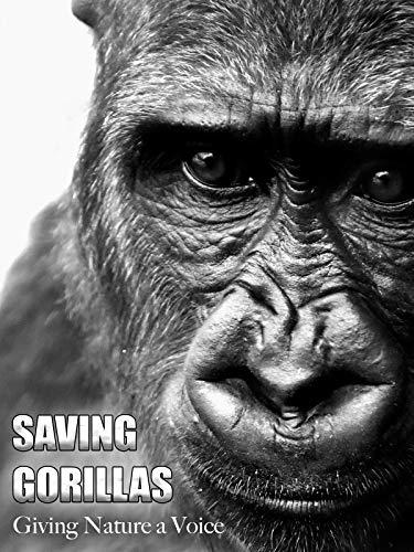 Saving Gorillas - Giving Nature a Voice