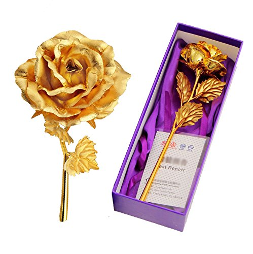 TRINKA 24k 10 Inch Gold Foil Rose, Presents for Birthday, Gift for Girlfriend, Anniversary, Christmas, Wedding, Mother's Day + Gift Box (Gold) Birthday Present Girlfriend
