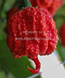 Fresh Organic Carolina Reaper Peppers | World's Hottest Pepper! (6)