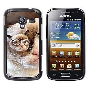 Be Good Phone Accessory // Dura Cáscara cubierta Protectora Caso Carcasa Funda de Protección para Samsung Galaxy Ace 2 I8160 Ace II X S7560M // Grumpy Cat Pink Nose Shorthair Funny