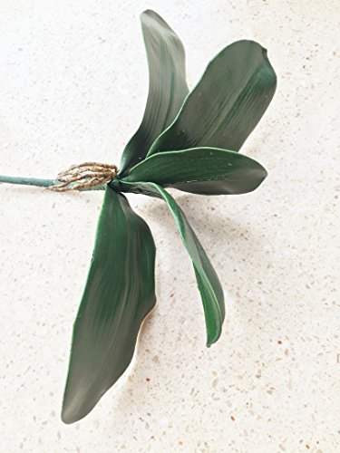 jiumengya 6pcs Real Touch Orchid Leaf Phalaenopsis Moth Orchid Leaf Bunch Orchid Green Plant 5 Petals for Wedding Floral Arrangement - Orchid Leaf Green