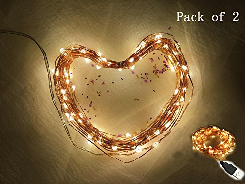 80 Warm White Led Fairy Lights