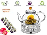 tea light teapot - Glass Teapot with Tea Warmer Lead Free Special Glass No Drip by Tea Beyond (Amber+Metal+Tea, 20 oz)