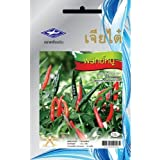 Thai Hot Pepper Chili (90 Seeds)Quality Seeds - 1 Package From Chai Tai, Thailand