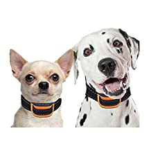FONPOO FP665V Dog No Bark Collar for Bark Control with Harmless Warning Sound and VIBRATION 7 Levels of Adjustable Sensitivity Control Electric Anti Bark Collar for 12-120 lb Dogs small and Medium Dogs