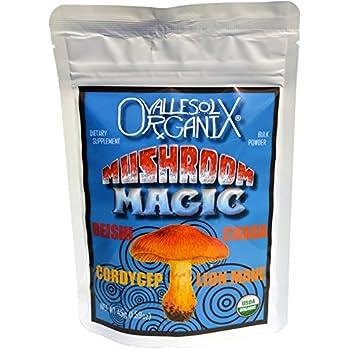 Mushroom Magic - Organic 16:1 Reishi, Cordyceps, Chaga, Lion's Mane Mushroom Extract Powder - 45 servings
