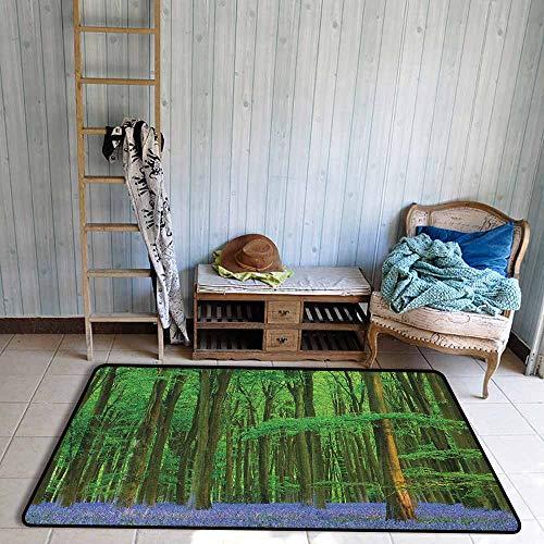(Outdoor Patio Rug,Woodland Spring Sunshine in a Bluebell Wood Summer Dream Holiday Getaway Destination,Anti-Slip Doormat Footpad Machine Washable,5'3