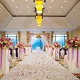 Excellent Designs White Wedding Aisle Runner – 100% Polyester – Charming Floral Print – Ideal for Indoor & Outdoor – 100 Foot Long Roll with Pull Cord & Adhesive Tape – 50GSM Thick & Durable
