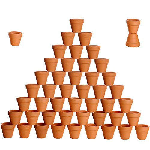 (besttoyhome 48 Pcs Small Mini Clay Pots 2'' Terracotta Pot Clay Ceramic Pottery Planter Cactus Flower Pots Succulent Nursery Pots- Great Plants,Crafts,Wedding Favor )
