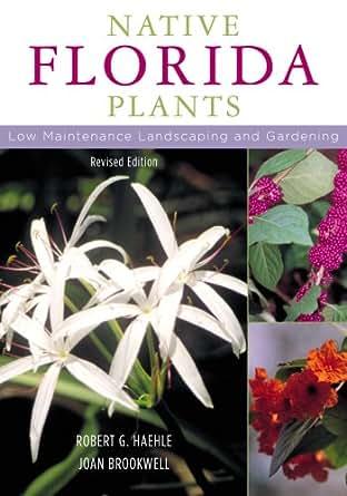 native florida plants maintenance