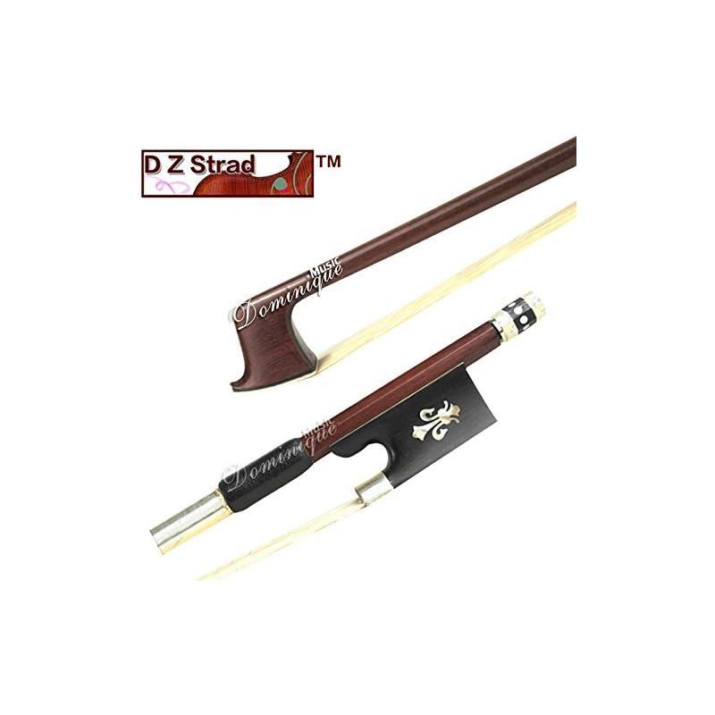 D Z Strad Model 202 Pernambuco Violin Bo