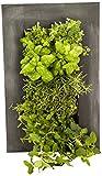 Bright Green BG-WM8CB Chalkboard Wall Mounted Frame Kit
