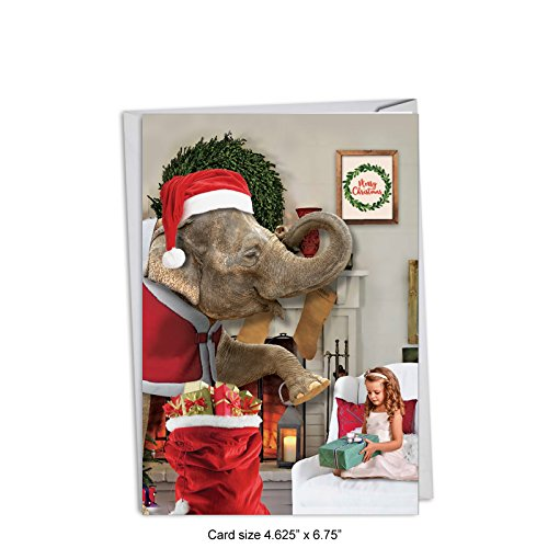 - 12 'Elephantasy' Boxed Christmas Cards with Envelopes 4.63 x 6.75 inch, Hilarious Elephant Christmas Notes, Sweet Animal-Themed Holiday Cards, Unique Christmas Stationery C4641XSG-B12