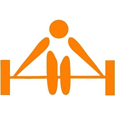 The Gym Coach