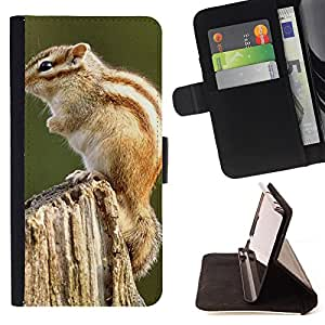- Squirrel - - Caja de la carpeta del tirš®n del cuero de la PU [con ranuras para tarjetas y cierre de solapa magnšŠtica] Pš¢rese cubierta de la caja FOR LG Optimus G2 D800 D801 D802 D803 VS980 F320 Skull Market